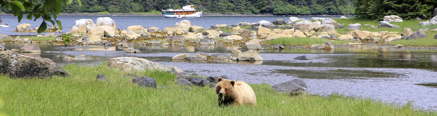 Alaska, yacht charters, small ship, inside passage, cruise, MV Discovery